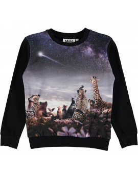 Molo - Longsleeve - Regine - Wish Upon A Star