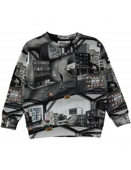 Molo - Sweater - Madsim - City Text