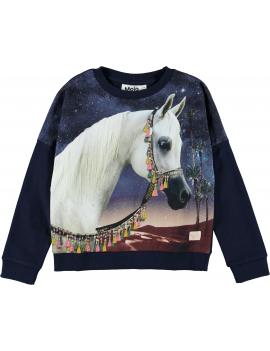 Molo - Sweater - Marigold - Arabian Horse