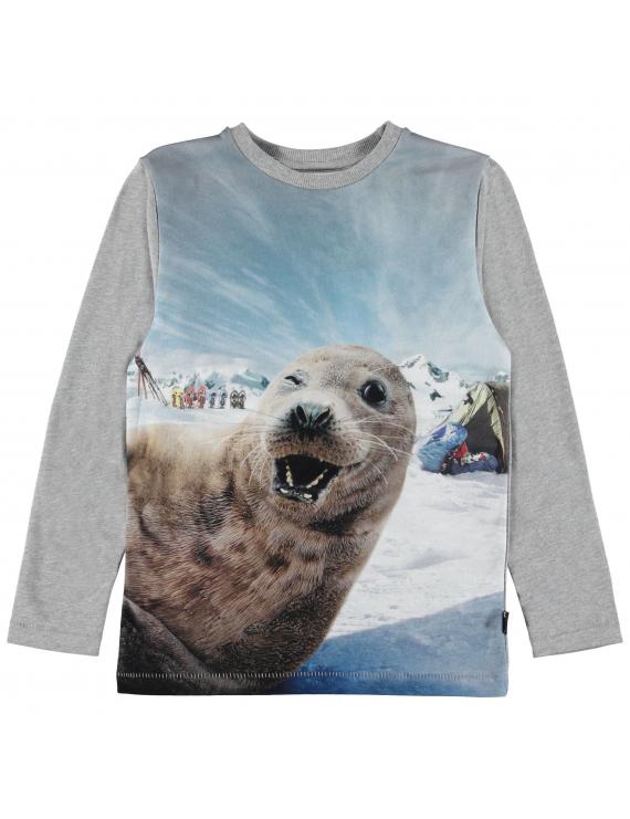 Molo - Longsleeve - Rexol - Seal-fie
