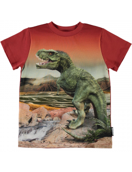 Molo - T-Shirt - Road - Dinosaurs