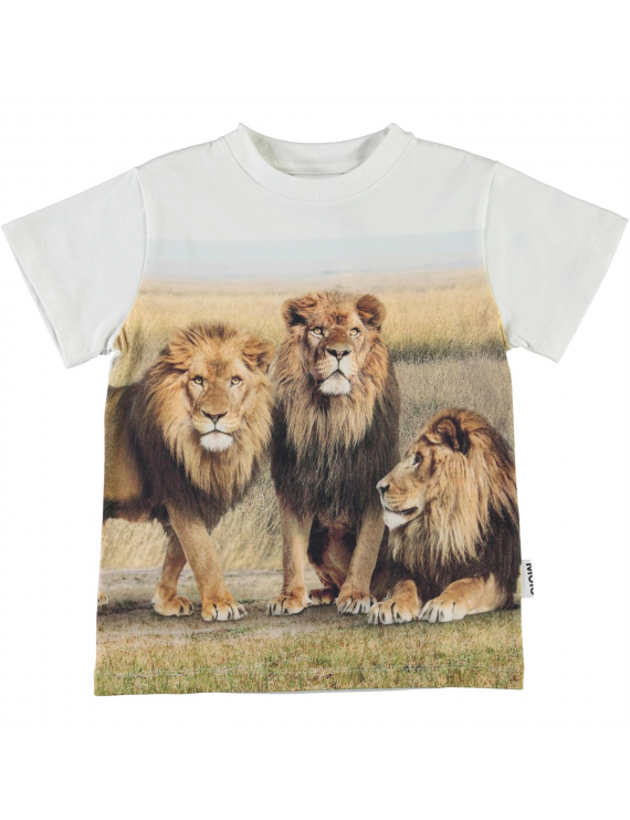 Molo - T-shirt - Road - Lions