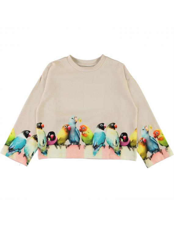 Molo - Sweater - Mikko - Love Birds Big