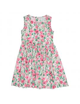 Gymp - Dress - Roses - Multi