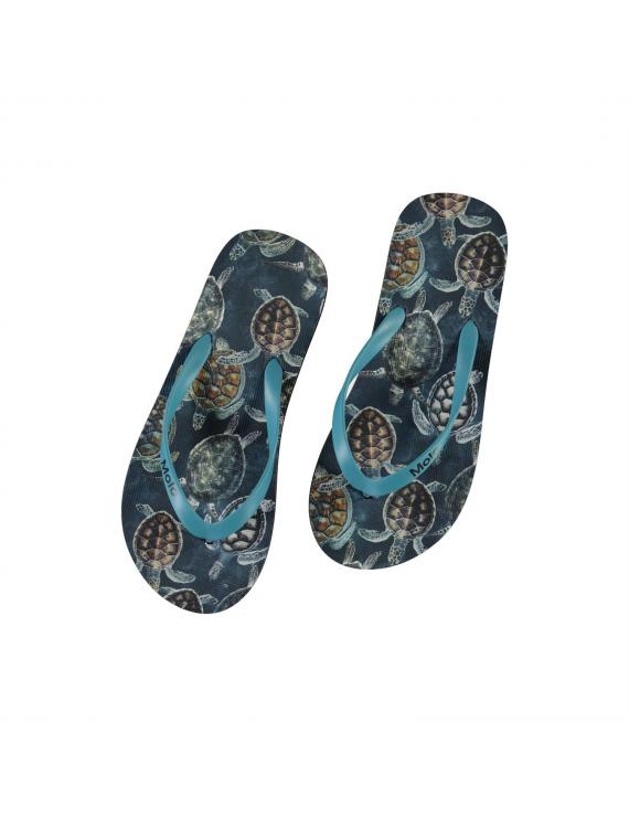 Molo - Slippers - Zeppo - Sea Turtles