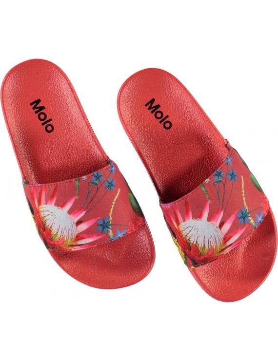 Molo - Badslippers - Zhappy - Australian Flowers