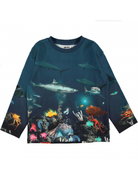 Molo - Sweater - Mountoo - Aquatic Life