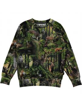 Molo - Longsleeve - Rill - Forest Life