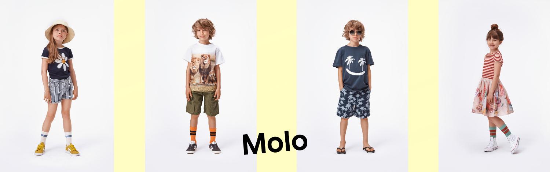 Molo Summer